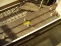 kalff-schaedlingsbekaempfung-hamburg-taubenbefall-taubenabwehr-taubenschutz